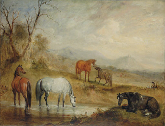 Horses at a Stream in an Exten
