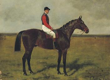 Ambush II, a Bay Racehorse wit