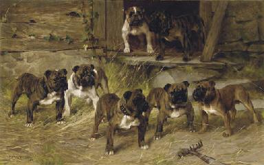 Bulldogs of the Twentieth Cent