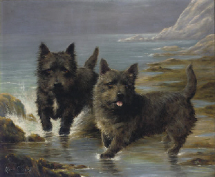 Two Cairn Terriers on the Shor