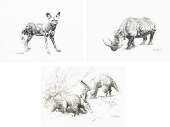 Wild Dog; African Rhinoceros a