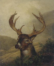 A Stag in a Mountainous Landsc