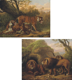 Tigers beside a tree; and Lion