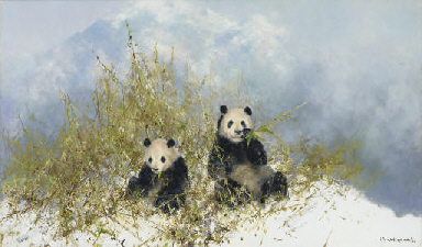 Pandas in Woolong Reserve