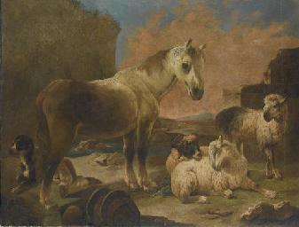Cavallo e armenti