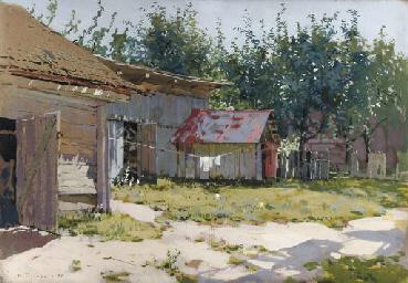 A backyard in summer