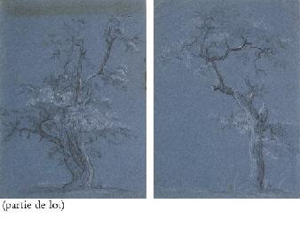 Suite de six études d'arbres
