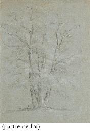 Suite de trois études d'arbres