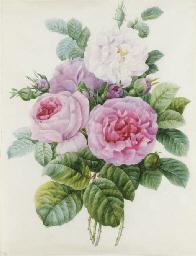 Bouquet de roses blanches et r