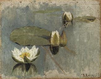 Waterlilies in bloom