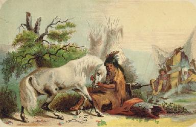 MILLER, Alfred J., illustrato