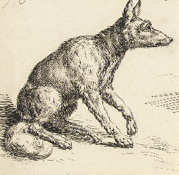 A seated fox in profile to the