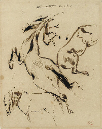 Studies of three horses