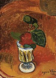 Rose dans un vase