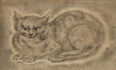 Chat au grelot