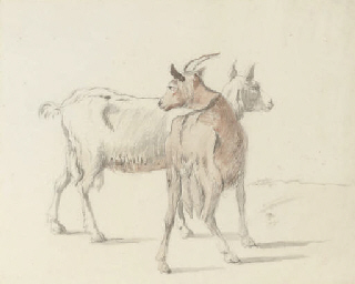 Study of goats