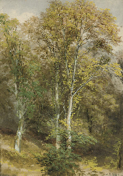 Two woodland scenes (one illus