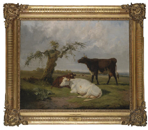 Cattle resting by a tree