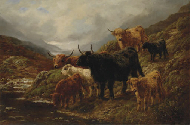Evening in the Glen