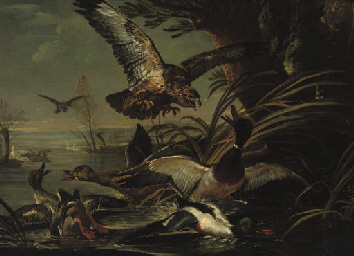 A bird of prey attacking ducks