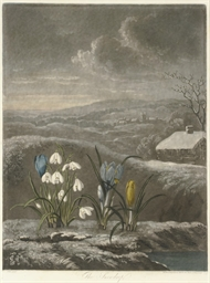 The Snow Drop, from The Temple