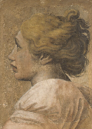 Head of a youth in profile to