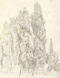 Cypresses by a fence with a st