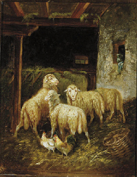 Sheep and roosters in a barn