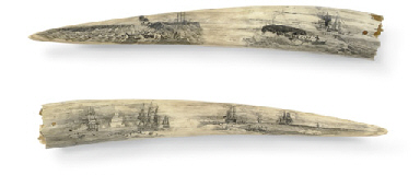 A pair of large scrimshaw walr