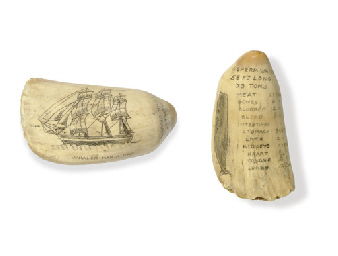 A 19th century scrimsahw whale