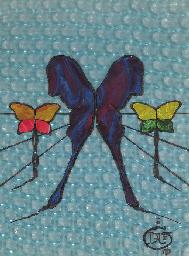Papillons psychédélique, proje