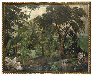 Jungle plantation