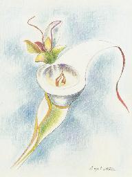 Fantasy Flower