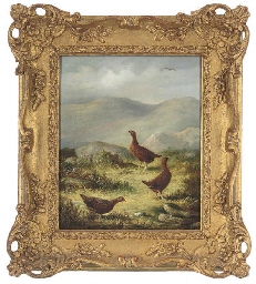 Three grouse on a grassy plate