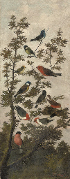 Songbirds in a tree (illustrat