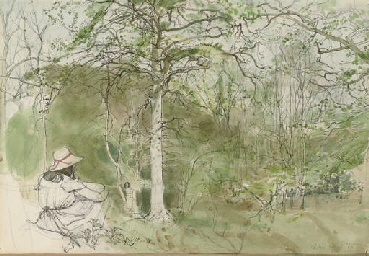 The woodland explorers