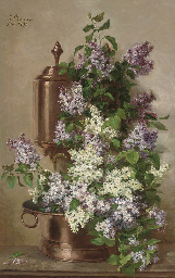 Lilacs in bloom in a copper bo