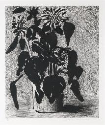 Sunflower II (To. 348)