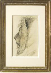 A lion's head in profile, faci