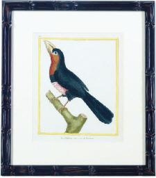 [Birds]: Six Plates