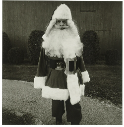 Santa Claus at school, Albion,