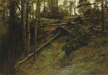 After the storm, Finzean