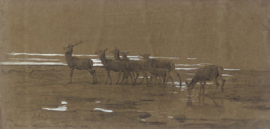 The Leading Stag