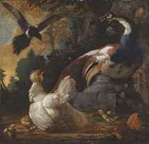 A peacock, poultry and a magpie in a landscape