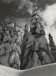 Winter, Glacier Point Road, Yo