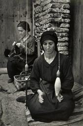 Spanish Spinner, 1951