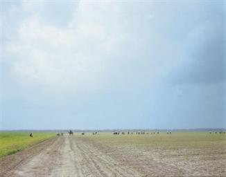 The Farm, Angola State Prison,