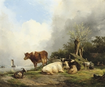 Cattle on a riverbank