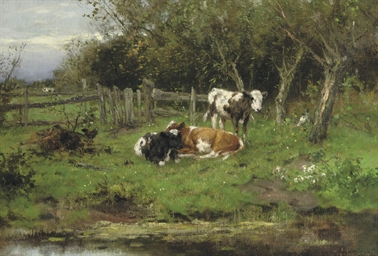 Calves by the water-front
