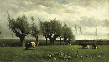 Wilgenrij: cattle grazing near